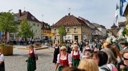 Schützenfest 2015 - Umzug_71